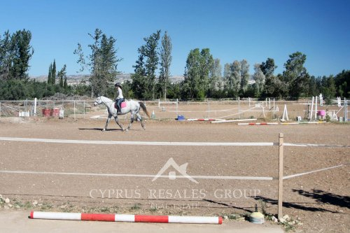 Geroskipou Equestrian - enjoys your horse rides in the sun