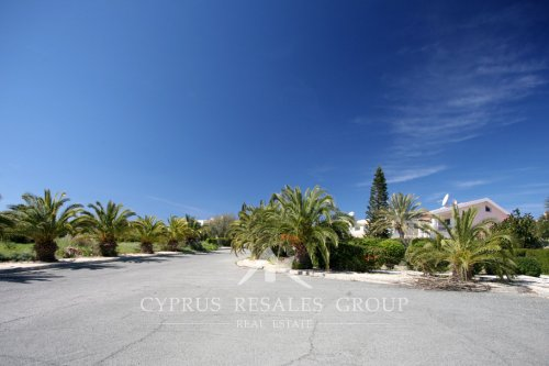 Palm lined streets of Coral Bay peninsula, Cyprus